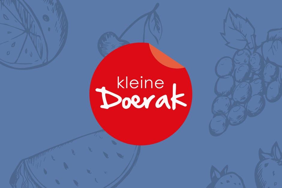 SEO Schagen Kleine Doerak website